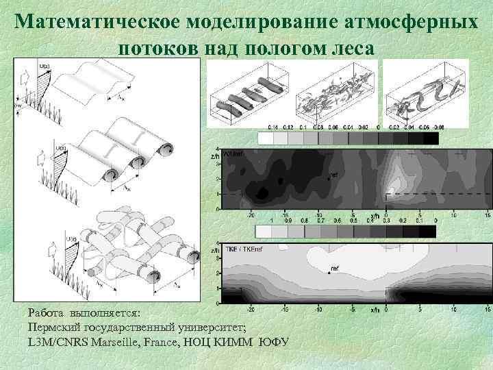 Математическое моделирование атмосферных потоков над пологом леса Работа выполняется: Пермский государственный университет; L 3