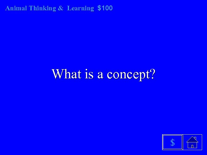 Animal Thinking & Learning $100 What is a concept? $