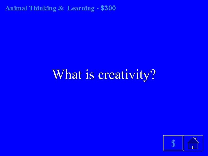 Animal Thinking & Learning - $300 What is creativity? $