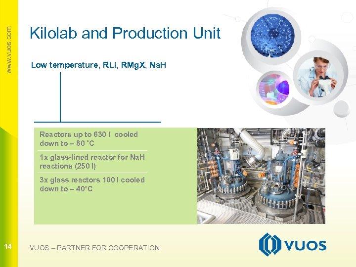 Kilolab and Production Unit Low temperature, RLi, RMg. X, Na. H Reactors up to