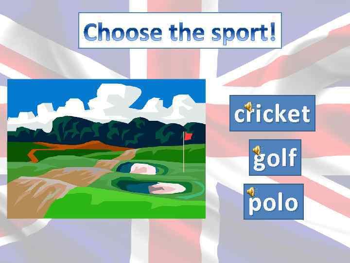 cricket golf polo