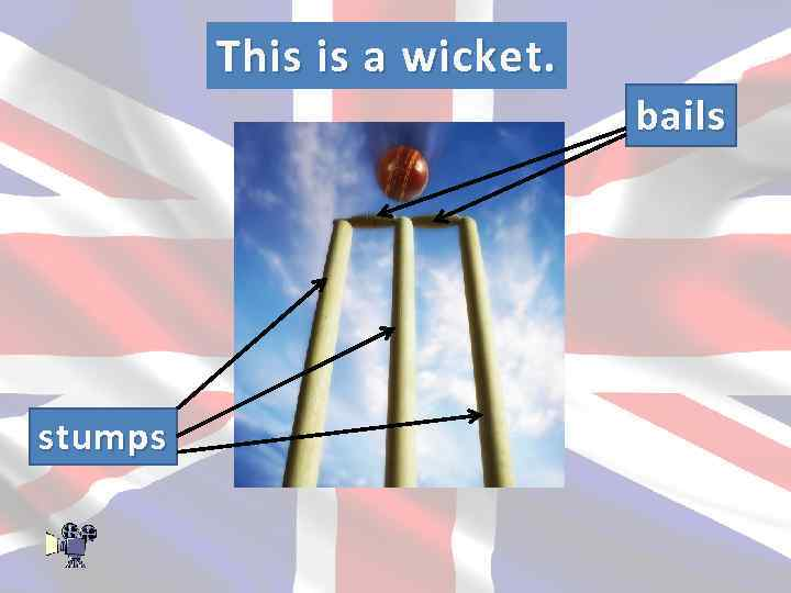 This is a wicket. bails stumps