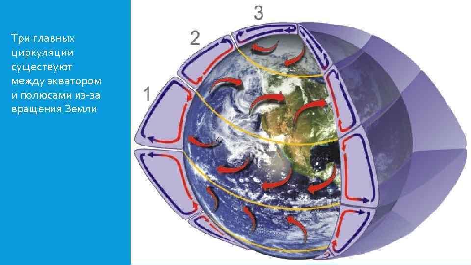 Три главных циркуляции существуют между экватором и полюсами из-за вращения Земли