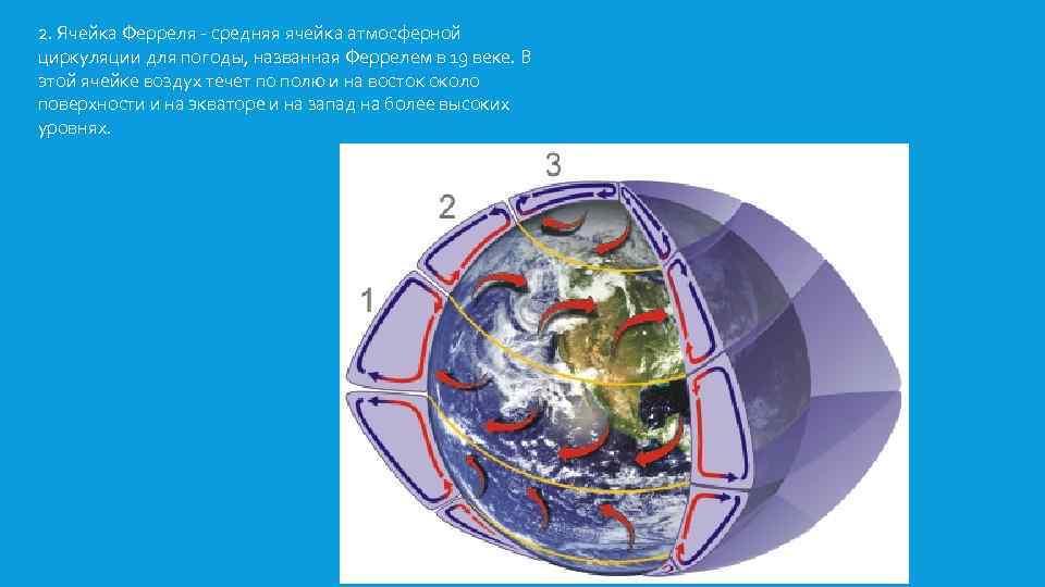 2. Ячейка Ферреля - средняя ячейка атмосферной циркуляции для погоды, названная Феррелем в 19