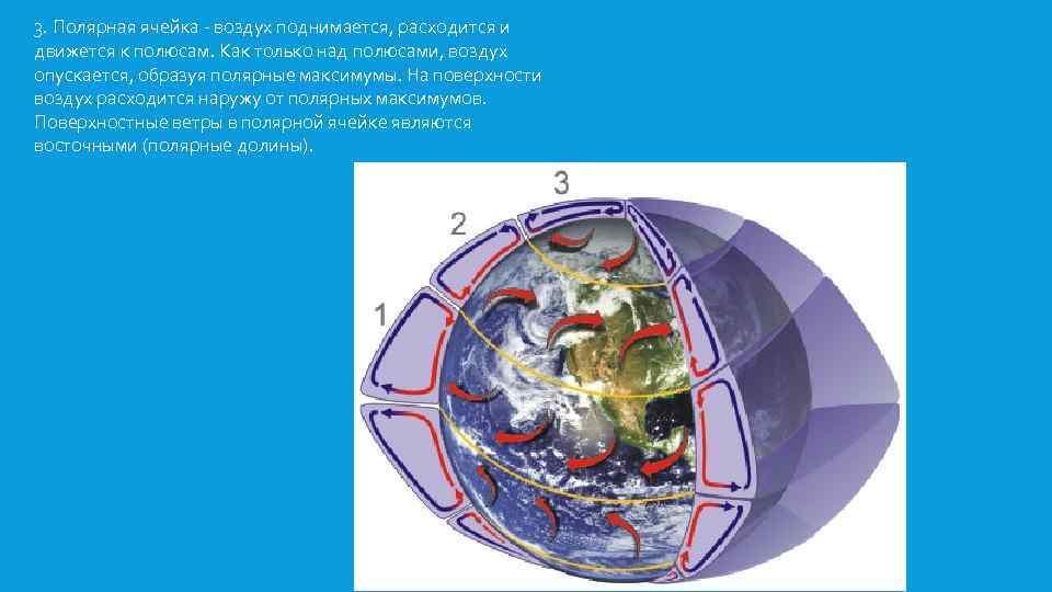 3. Полярная ячейка - воздух поднимается, расходится и движется к полюсам. Как только над