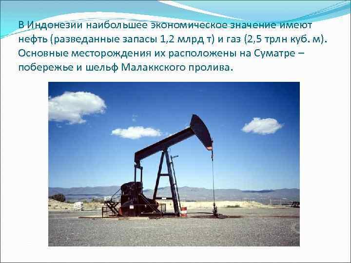 В Индонезии наибольшее экономическое значение имеют нефть (разведанные запасы 1, 2 млрд т) и