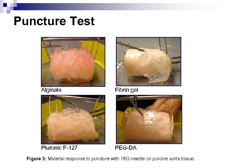 Puncture Test Alginate Fibrin gel Pluronic F-127 PEG-DA Figure 3: Material response to puncture
