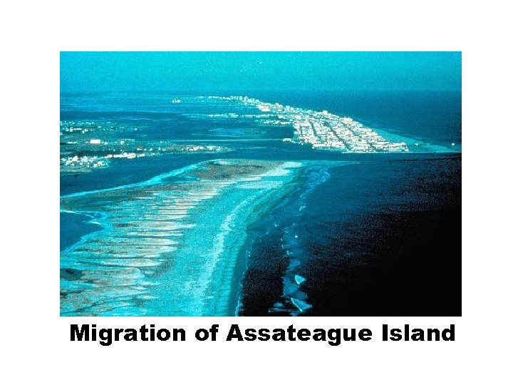 Migration of Assateague Island