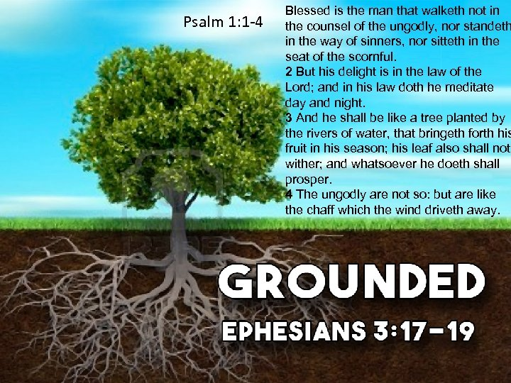 Psalm 1: 1 -4 Blessed is the man that walketh not in the counsel