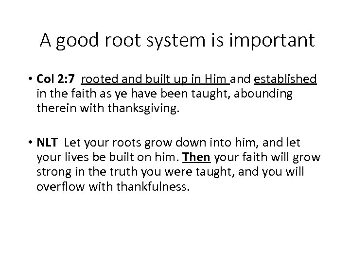 A good root system is important • Col 2: 7 rooted and built up