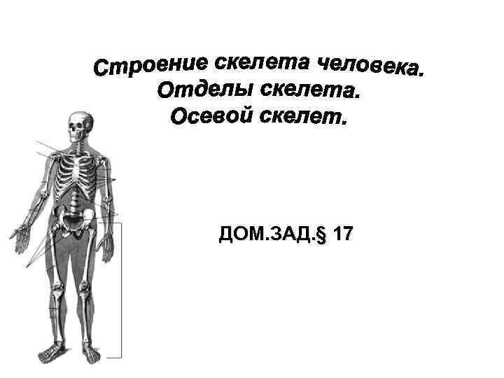 ДОМ. ЗАД. § 17