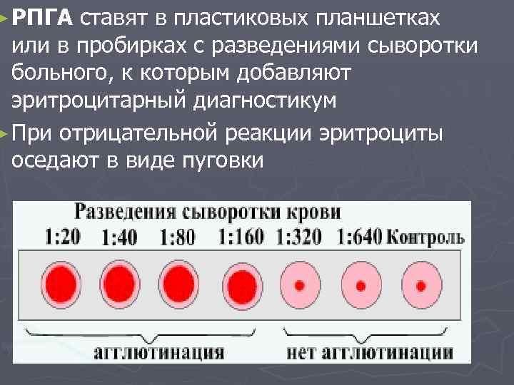 Рпга тощак на крови анализ на крови на курская анализ