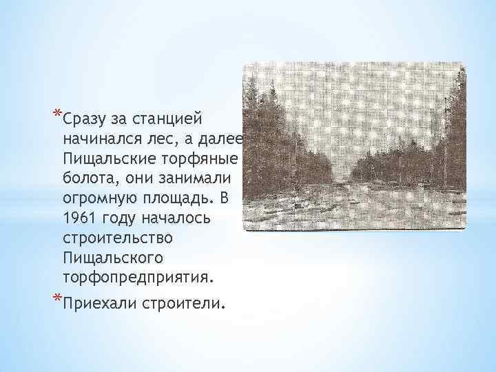 *Сразу за станцией начинался лес, а далее Пищальские торфяные болота, они занимали огромную площадь.