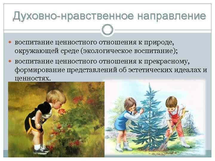 Духовно-нравственное направление воспитание ценностного отношения к природе, окружающей среде (экологическое воспитание); воспитание ценностного отношения