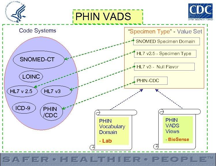 "PHIN VADS Code Systems ""Specimen Type"" - Value Set SNOMED Specimen Domain HL 7"