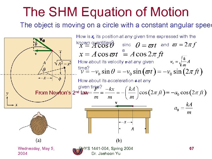 The SHM Equation of Motion The object is moving on a circle with a