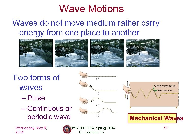 Wave Motions Waves do not move medium rather carry energy from one place to