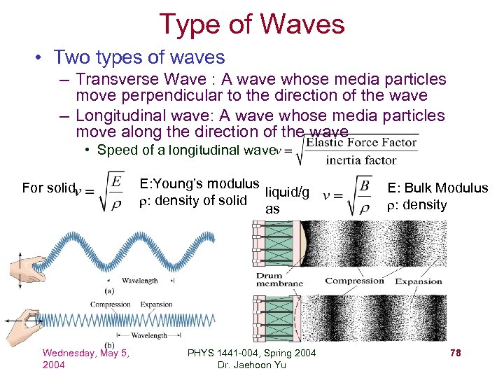 Type of Waves • Two types of waves – Transverse Wave : A wave