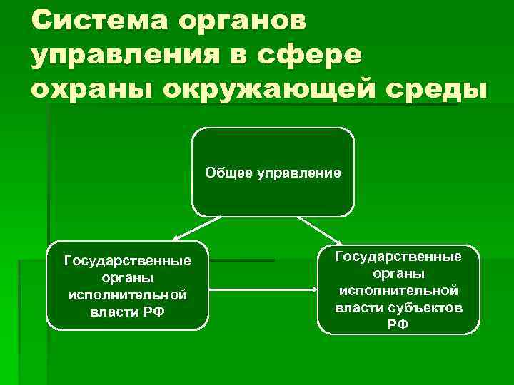 Система органов управления в сфере охраны окружающей среды Общее управление Государственные органы исполнительной власти