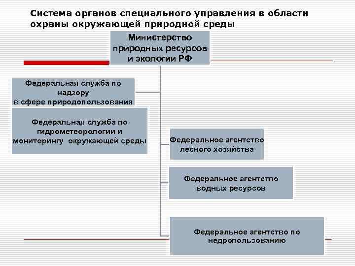 Система органов специального управления в области охраны окружающей природной среды Министерство природных ресурсов и