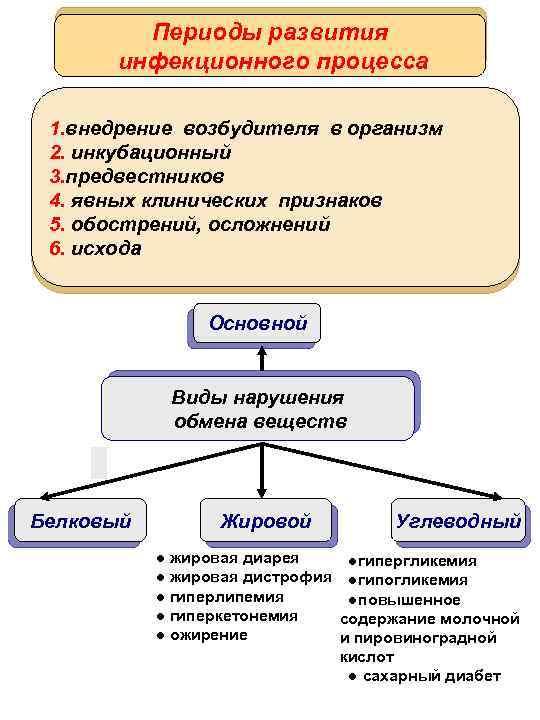 Периоды развития инфекционного процесса 1. внедрение возбудителя в организм 2. инкубационный 3. предвестников 4.