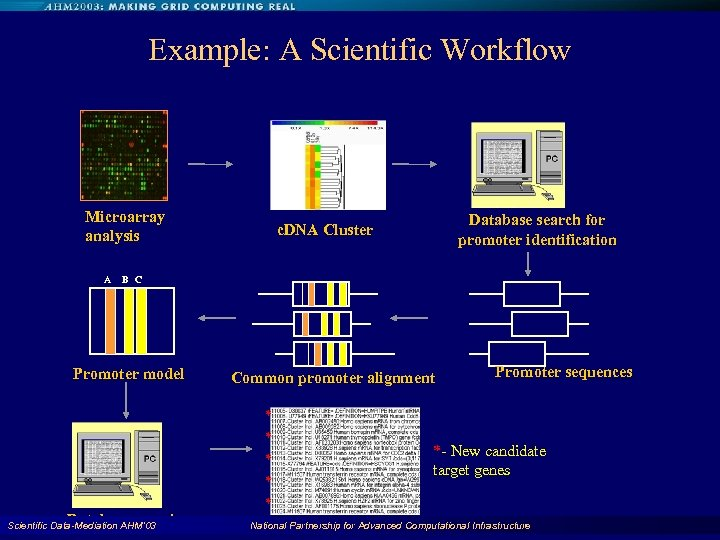 Example: A Scientific Workflow Microarray analysis A Database search for promoter identification c. DNA