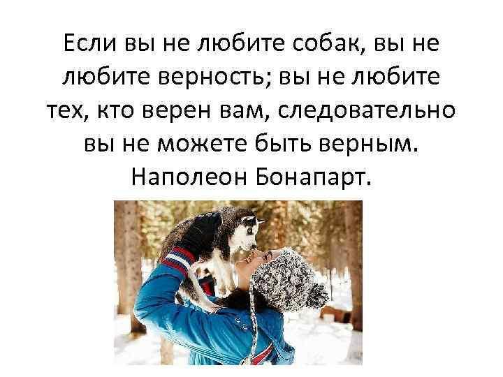 Если вы не любите собак, вы не любите верность; вы не любите тех, кто