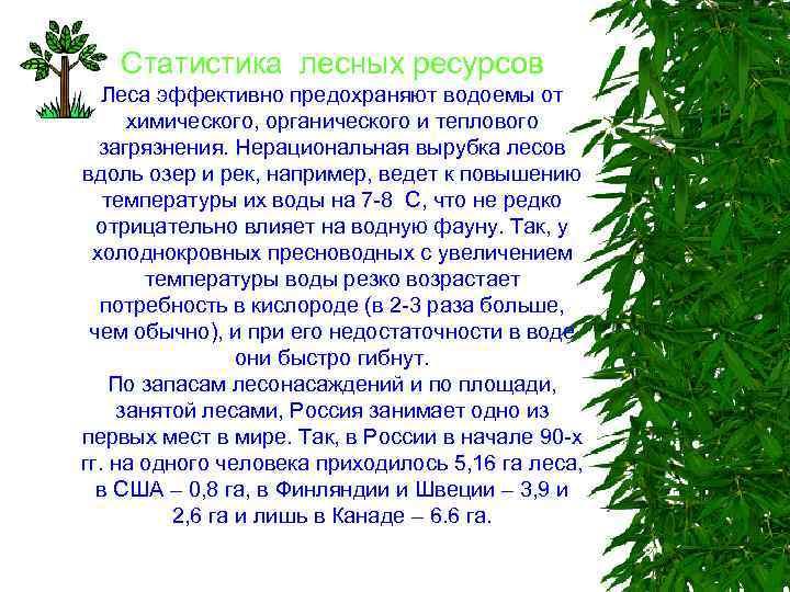 Статистика лесных ресурсов Леса эффективно предохраняют водоемы от химического, органического и теплового загрязнения. Нерациональная