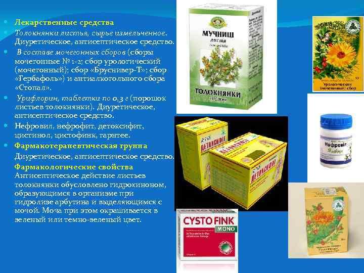 Лекарственные средства Толокнянки листья, сырье измельченное. Диуретическое, антисептическое средство. В составе мочегонных сборов