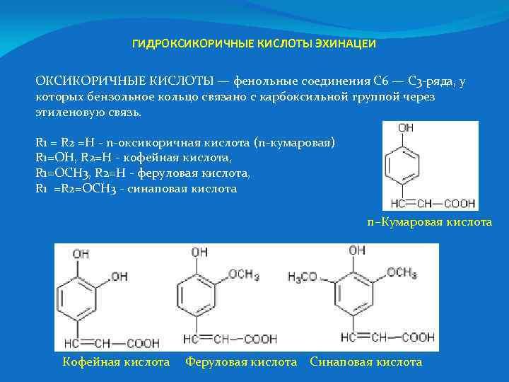 ГИДРОКСИКОРИЧНЫЕ КИСЛОТЫ ЭХИНАЦЕИ ОКСИКОРИЧНЫЕ КИСЛОТЫ — фенольные соединения С 6 — С 3 -ряда,