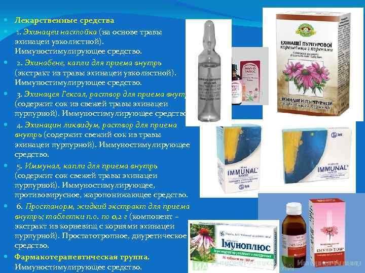 Лекарственные средства 1. Эхинацеи настойка (на основе травы эхинацеи узколистной). Иммуностимулирующее средство. 2.