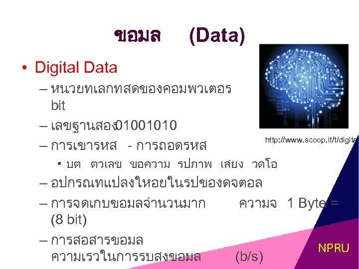ขอมล (Data) • Digital Data – หนวยทเลกทสดของคอมพวเตอร bit – เลขฐานสอง 01001010 – การเขารหส -