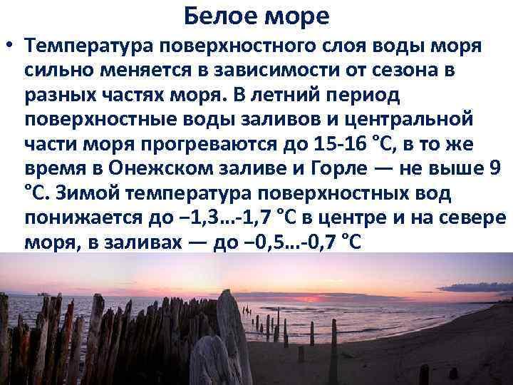 Белое море • Температура поверхностного слоя воды моря сильно меняется в зависимости от сезона