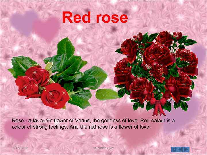 Red rose Rose - a favourite flower of Venus, the goddess of love. Red