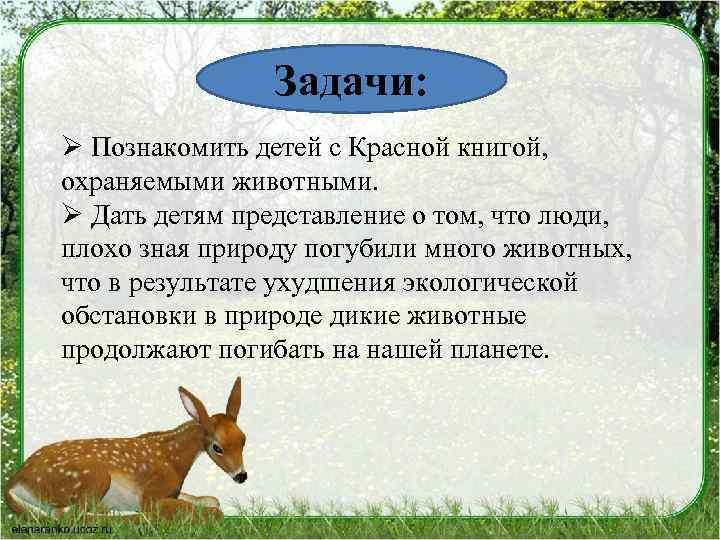 Задачи: Ø Познакомить детей с Красной книгой, охраняемыми животными. Ø Дать детям представление