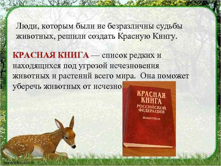 Люди, которым были не безразличны судьбы животных, решили создать Красную Книгу. КРАСНАЯ КНИГА —
