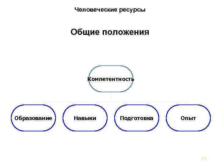 Человеческие ресурсы Общие положения Компетентность Образование Навыки Подготовка Опыт 75