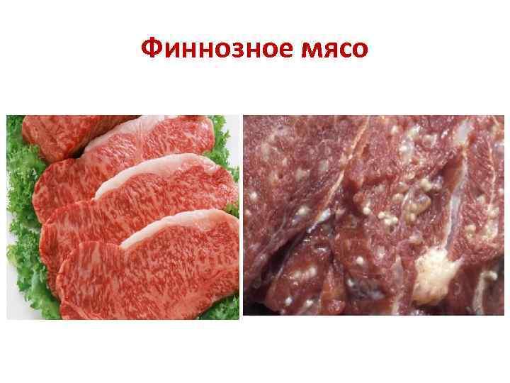 финнозное мясо в картинках нарощенных волос, бриллиантов
