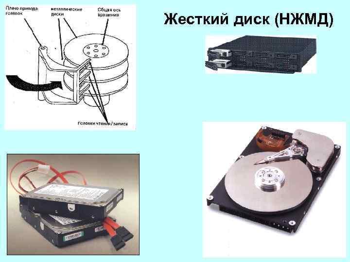 Жесткий диск (НЖМД)