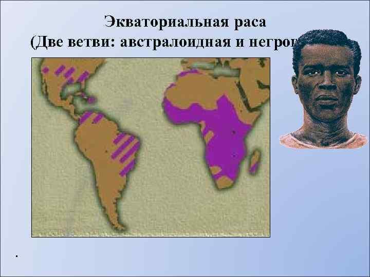 Экваториальная раса (Две ветви: австралоидная и негроидная) .