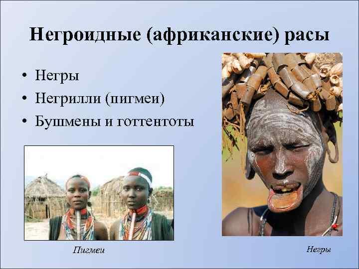 Негроидные (африканские) расы • Негрилли (пигмеи) • Бушмены и готтентоты Пигмеи Негры
