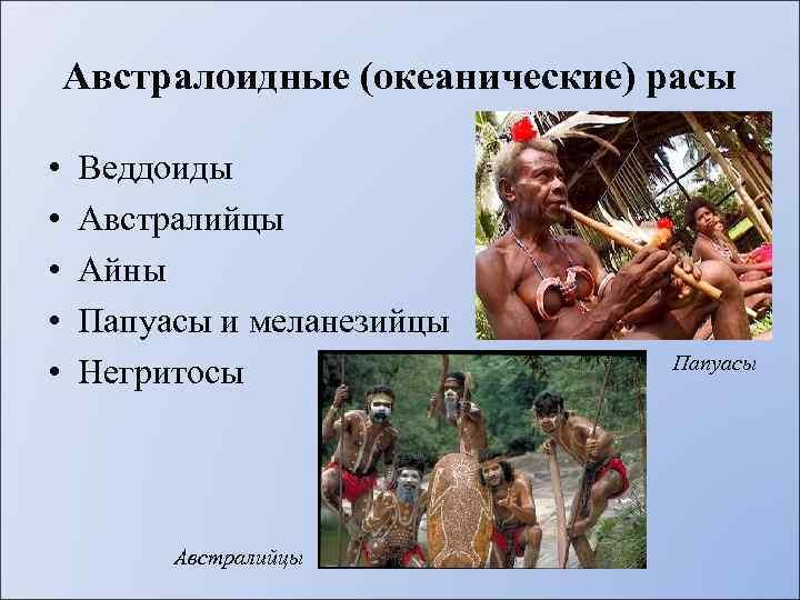 Австралоидные (океанические) расы • • • Веддоиды Австралийцы Айны Папуасы и меланезийцы Негритосы Австралийцы