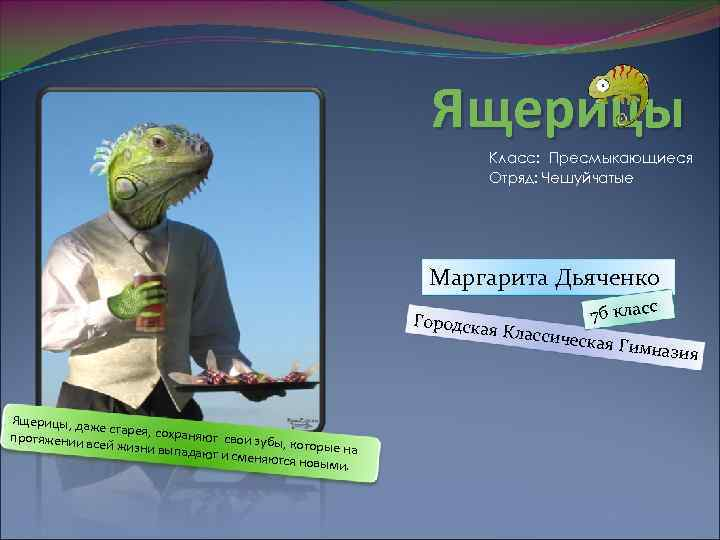 Ящерицы Класс: Пресмыкающиеся Отряд: Чешуйчатые Маргарита Дьяченко 7 б класс я Классич еская Гим