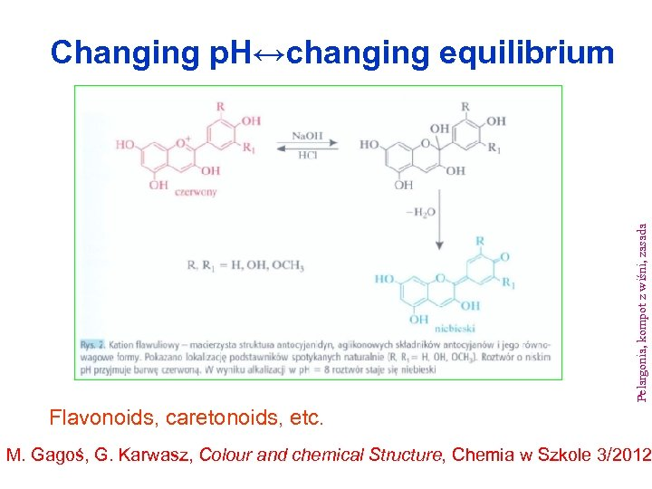 Pelargonia, kompot z wiśni, zasada Changing p. H↔changing equilibrium Flavonoids, caretonoids, etc. M. Gagoś,