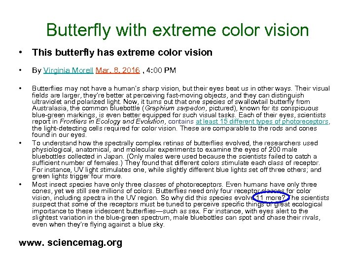 Butterfly with extreme color vision • This butterfly has extreme color vision • By