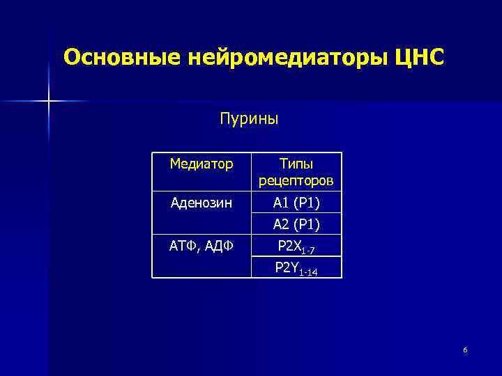 Основные нейромедиаторы ЦНС Пурины Медиатор Типы рецепторов Аденозин А 1 (Р 1) А 2