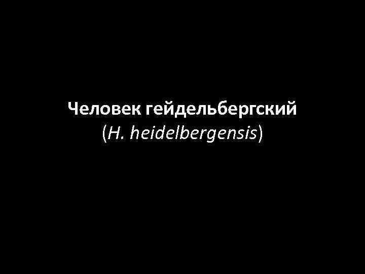 Человек гейдельбергский (H. heidelbergensis)