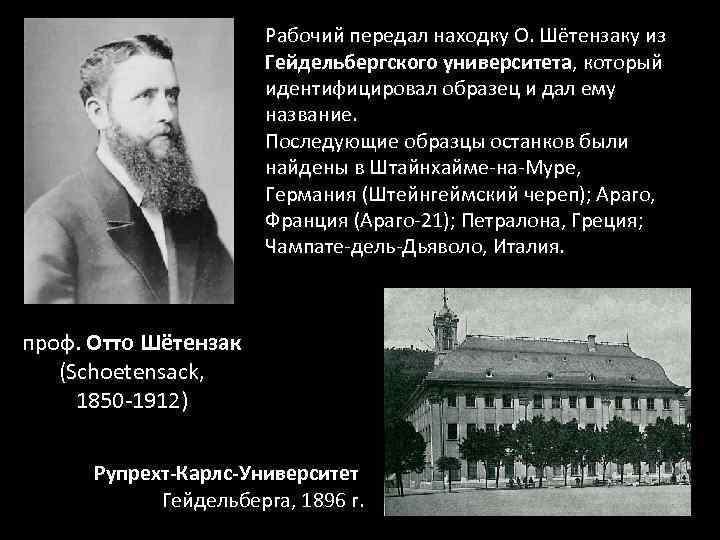 Рабочий передал находку О. Шётензаку из Гейдельбергского университета, который идентифицировал образец и дал ему