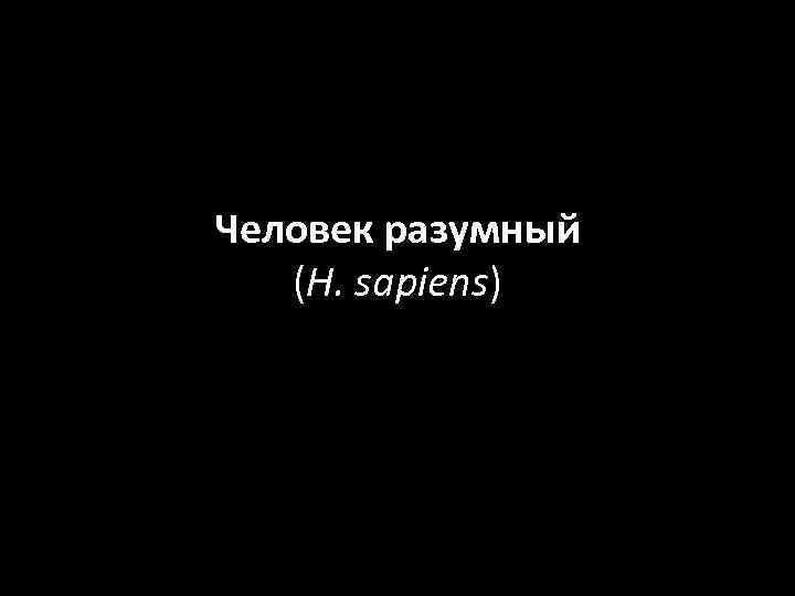 Человек разумный (H. sapiens)