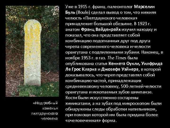 «Надгробный камень» пилтдаунского человека Уже в 1915 г. франц. палеонтолог Марселин Буль (Boule)